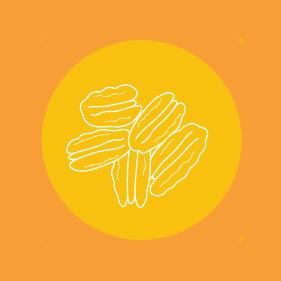 Pekaanipähkinä icon